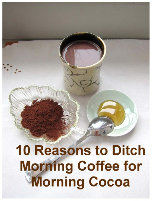 10 important health reasons to replace morning coffee with morning hot cocoa from Rural Spin