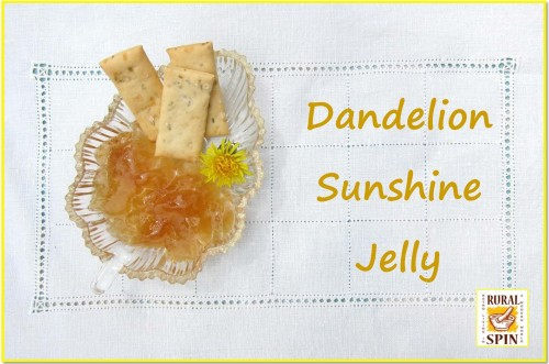 Dandelion Sunshine Jelly by Rural Spin - www.ruralspin.com
