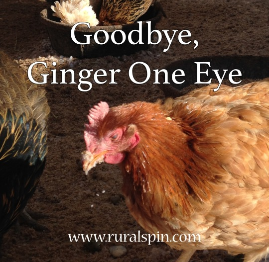 Goodbye Ginger One Eye, by Rural Spin