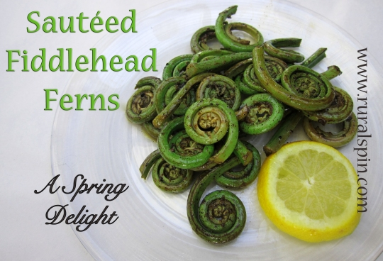Sautéed Fiddlehead Ferns by www.ruralspin.com